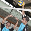 Volleyball game — Stock Photo