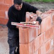 Bricklayer building a house - Stock Photo