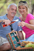 Couple enjoying a picnic together — Stock Photo