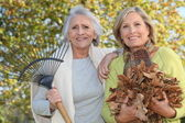 Mother and daughter collecting leaves — Stock Photo