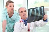 Iki doktor röntgen görüntü incelenmesi — Stok fotoğraf