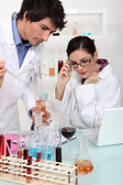 Oenologists analysing different wines — Stock Photo