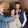 Couple learning how to taste wine — Foto de stock #7902955