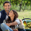 Romantic man and woman picking grapes and drinking wine - Stock Photo