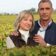 Couple of viticultors amid vineyards — Stock Photo