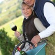 Couple in a vineyard — Stock Photo #7903246