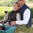 Couple tasting wine in a vineyard — Stock Photo #7903266