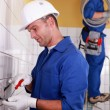 Stock Photo: Electrical team wiring wall sockets