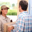 Foto Stock: Womdelivering parcel