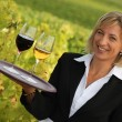 Waitress with red and white wine in a vineyard — Стоковое фото