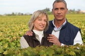 Couple of viticultors amid vineyards — Foto Stock