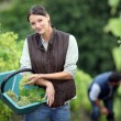 Farming couple collecting grapes — Stock Photo #7910977