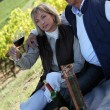 Couple having picnic in the vineyard - Photo