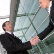 Business shaking hands — Stock Photo #7913349