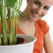 Stock Photo: Womtaking care of plants