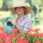 Woman watering flowers — Stock Photo