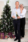 Senior couple celebrating Christmas — 图库照片
