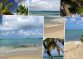 Images of an island paradise — Stock Photo