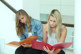 Two female students looking through work folders — Stock Photo