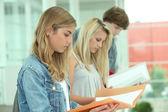 Last minute revisies voor examen — Stockfoto