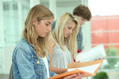 Last minute revisioni prima esame — Foto Stock