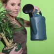 Woman watering plants — Stock fotografie
