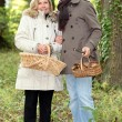 Stock Photo: Couple collecting wild mushrooms