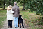 Older couple walking a dog — Stock Photo