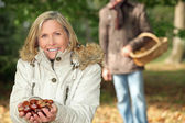 Gathering chestnuts — Stock Photo