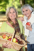 Women gathering chestnuts and apples — Stock Photo