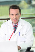 Portrait of doctor — Stock Photo