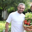 Stock Photo: Couple taking care of their vegetable garden.