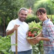 Couple stood in garden with vegetables — Stock Photo