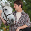 Stock Photo: Mlooking after horse