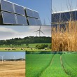 Collage of sustainable energy - Stock Photo