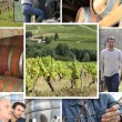 Stock Photo: Winemakers