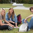 Three students sat in the park working — Foto de Stock