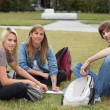 Three students sat in the park working — Stok fotoğraf