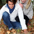 Young couple in forest picking mushrooms — Stock fotografie