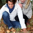 Young couple in forest picking mushrooms — Stockfoto
