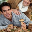 Couple picking wild mushrooms — Stock Photo