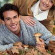 Couple picking wild mushrooms — Stock Photo #7951774