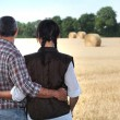 Couple looking at a field — Stock Photo
