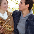Stock Photo: Couple gathering chestnuts