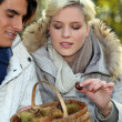Couple collecting chestnuts — Stock Photo #7952863