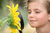 Child examining a sunflower with a magnifying glass — Stock Photo