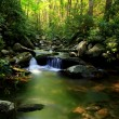 Long stream in the smokey mountains — Stock Photo