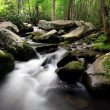 Stock Photo: Rocky stream in smokey mountains