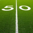 American Football Field Fifty Yard Line — Stock Photo #6793041