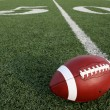 Stock Photo: Football with Fifty Yard Line